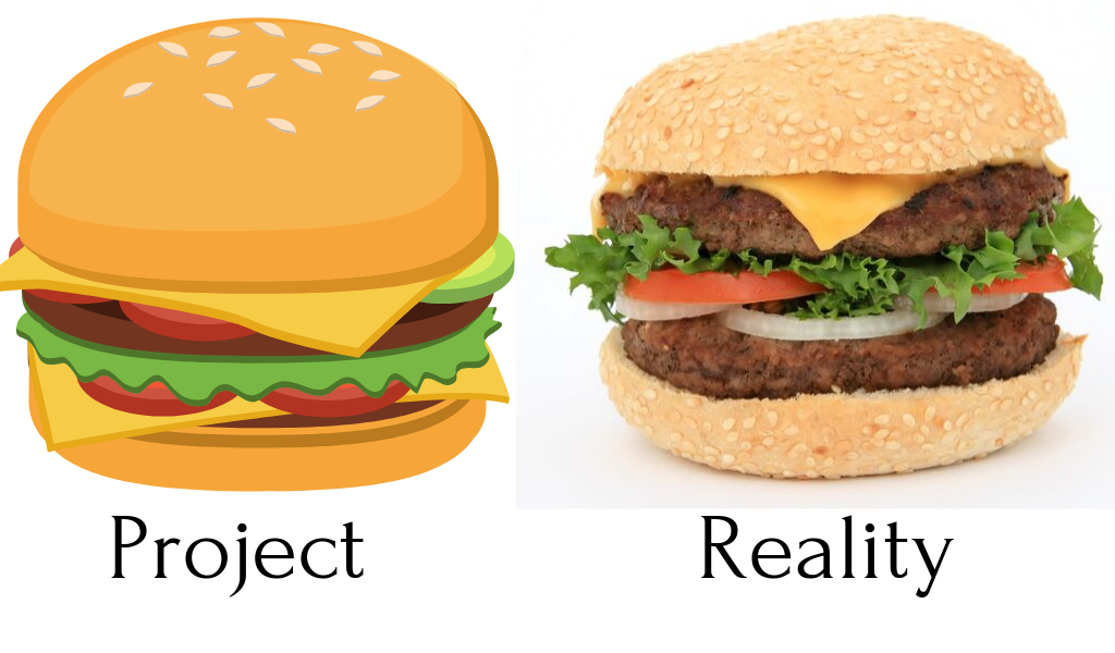 project vs reality
