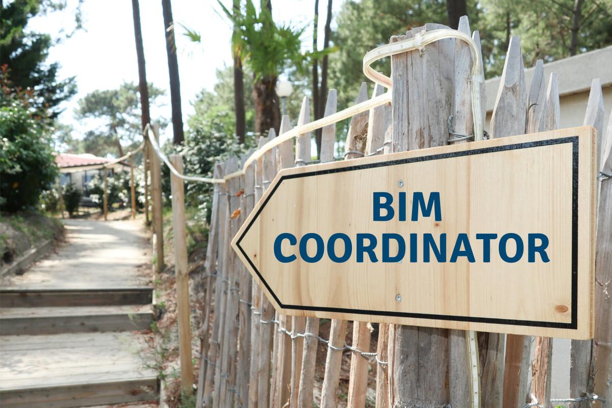 Who can become a BIM Coordinator?