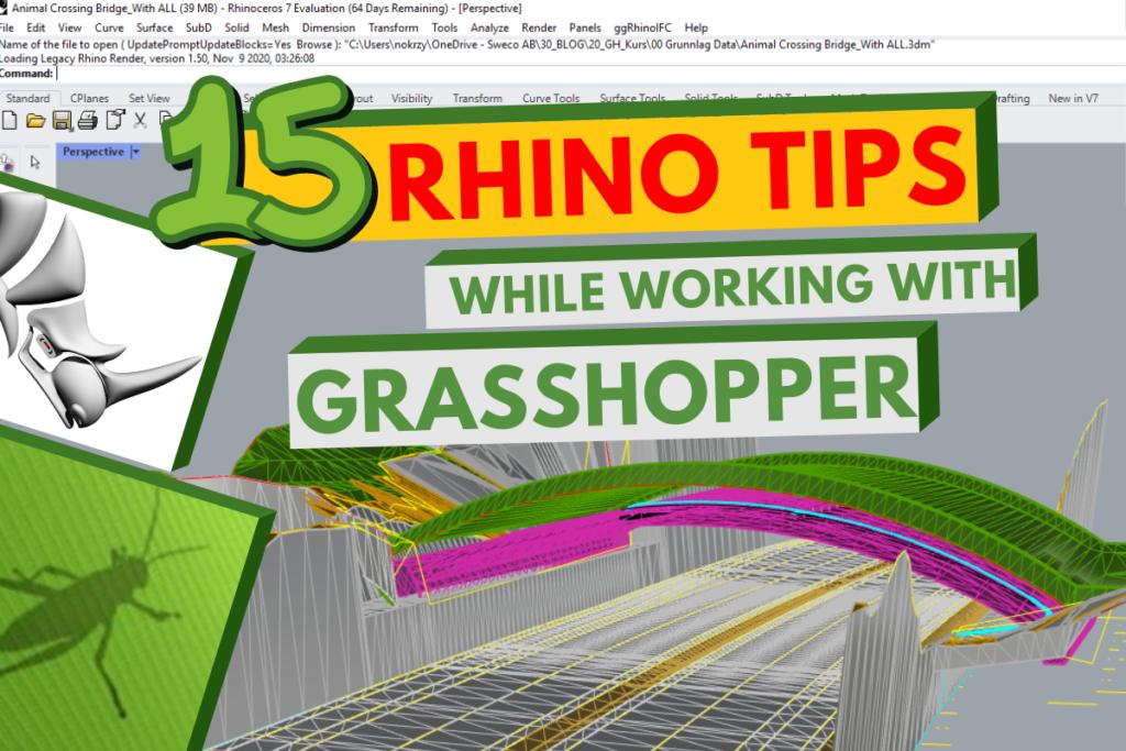 Rhino tips