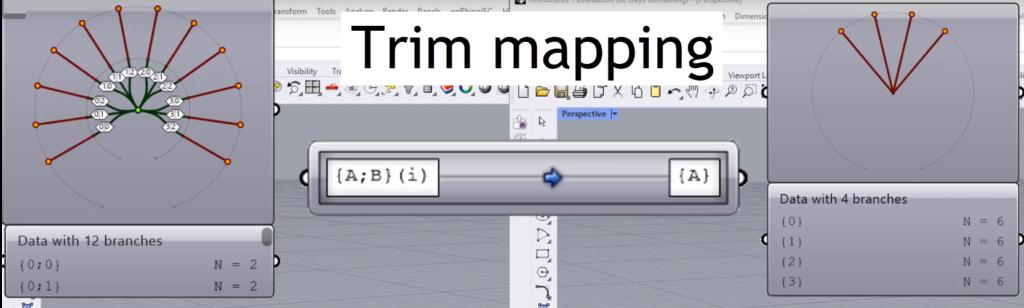 Trim mapping in Grasshopper